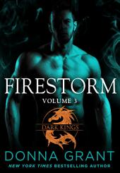 Firestorm: Volume 3: A Dragon Romance