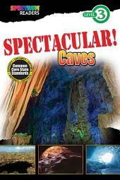 SPECTACULAR! Caves: Level 3