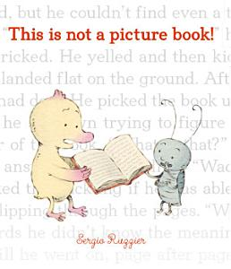 This Is Not a Picture Book  Book