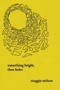 Something Bright  Then Holes Book