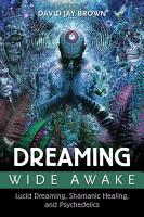 Dreaming Wide Awake PDF