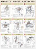 Strength Training Anatomy Back Poster