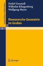 Riemannsche Geometrie im Großen: Ausgabe 2
