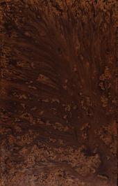 Dictionnaire universel d'histoire naturelle: résumant et complétant tous les faits présentés par les encyclopédies, les anciens dictionnaires scientifiques, les oeuvres complètes de Buffon, et les meilleurs traités spéciaux sur les diverses branches des sciences naturelles...