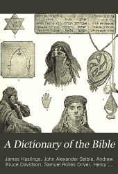 A Dictionary of the Bible: Dealing with Its Language, Literature, and Contents, Including the Biblical Theology, Volume 1