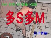 SM・変態・SF短編小説集「多S多M」
