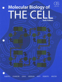 Molecular Biology Of The Cell Sixth Edition