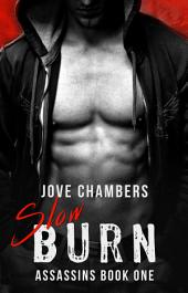 Slow Burn: A Bad Boy Romance
