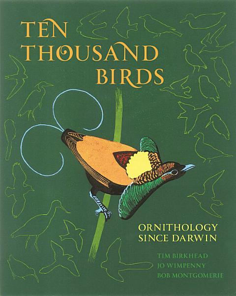 Download Ten Thousand Birds Book
