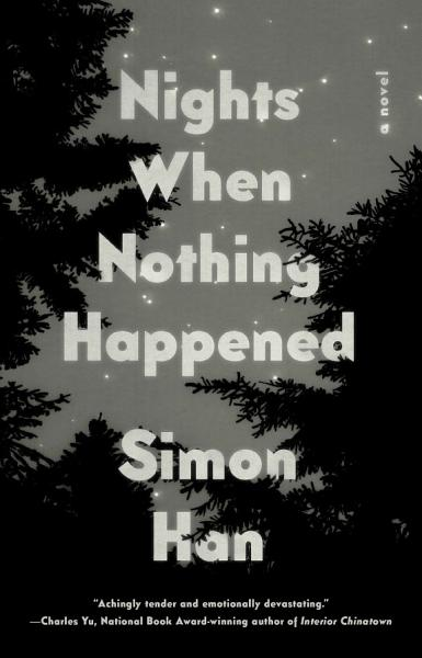 Download Nights When Nothing Happened Book