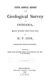 First[-tenth] Annual Report of the Geological Survey of Indiana, Made During the Year 1869[-1878] by E. G. Cox, State Geologist