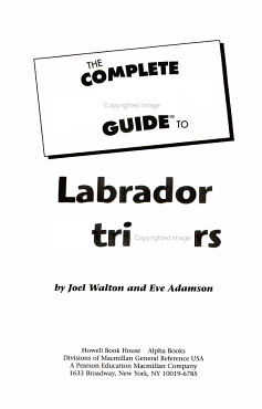 The Complete Idiot s Guide to Labrador Retrievers PDF