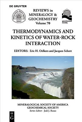 Thermodynamics and Kinetics of Water Rock Interaction PDF