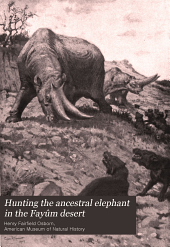Hunting the Ancestral Elephant in the Fayûm Desert: Discoveries of the Recent African Expeditions of the American Museum of Natural History