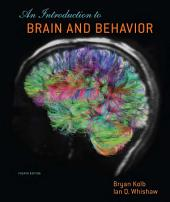 Introduction to Brain and Behavior (Loose-Leaf): Edition 4