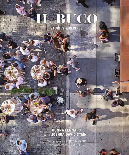 Download Il Buco Book