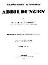 Mikroskopisch-anatomische Abbildungen: zur Erläuterung seines anatomischen Handbuches. Tafel VIII - X, Band 2