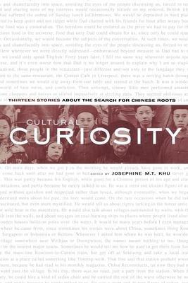 Cultural Curiosity PDF