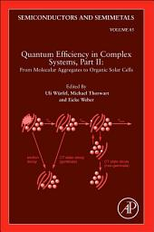Quantum Efficiency in Complex Systems, Part II: From Molecular Aggregates to Organic Solar Cells: Organic Solar Cells