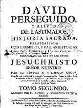David perseguido y alivio de lastimados: historia sagrada parafraseada con exemplos y varias historias humanas y divinas ...