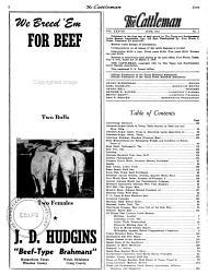 The Cattleman PDF