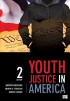 Youth Justice in America PDF