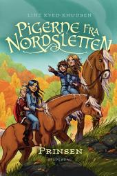 Pigerne fra Nordsletten 1 - Prinsen