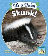 It's a Baby Skunk