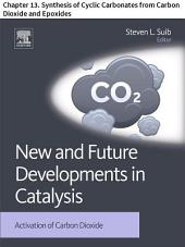 New and Future Developments in Catalysis: Chapter 13. Synthesis of Cyclic Carbonates from Carbon Dioxide and Epoxides
