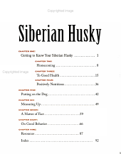 The Essential Siberian Husky PDF