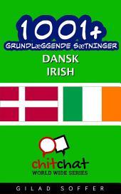 1001+ grundlæggende sætninger dansk - Irish