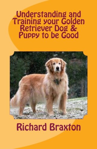 Understanding And Training Your Golden Retriever Dog And Puppy To Be Good
