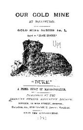 Our Gold Mine at Hollyhurst: A Prize Story of Massachusetts