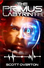 The Primus Labyrinth PDF