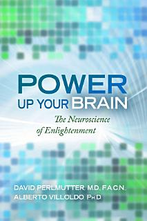 Power Up Your Brain Book