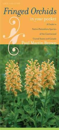 Fringed Orchids in Your Pocket PDF