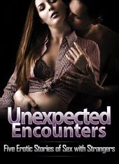 Unexpected Encounters: Five Erotic Stories of Sex with Strangers