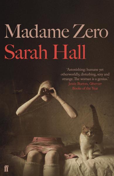 Download Madame Zero Book