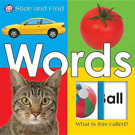 Large Slide and Find Words PDF