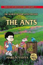 The World Of Our Little Friends, Ants