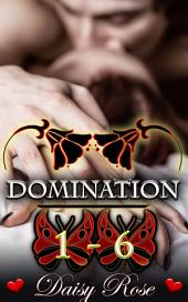 Domination 1 - 6: The Complete Anthology