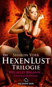 Die HexenLust Trilogie - Wie alles begann   Erotischer Roman: Die Hexen beschützen die Menschheit vor Vampiren, Dämonen & Magiern ...