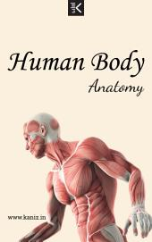 Human Body Anatomy: by Knowledge flow