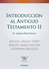 Introducción al Antiguo Testamento II: Libros proféticos