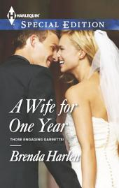A Wife for One Year