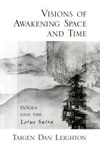 Visions of Awakening Space and Time PDF