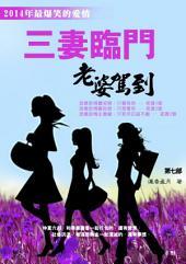 三妻臨門第七部: 《最新浪漫愛情勵志幽默小說》