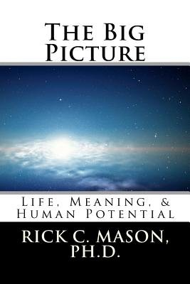 The Big Picture  Life  Meaning    Human Potential PDF
