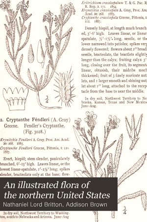An Illustrated Flora of the Northern United States