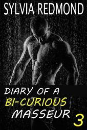 Diary of a Bi-curious Masseur 3